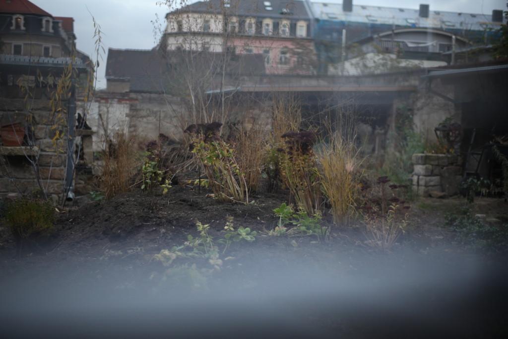 Garten HerbstNov2014