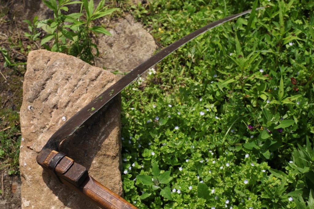Vor wie vielen Jahren ist dieser Sichelkopf eingepasst wurden? Geöltes Metall  und glatt-glänzend gegriffenes Holz.